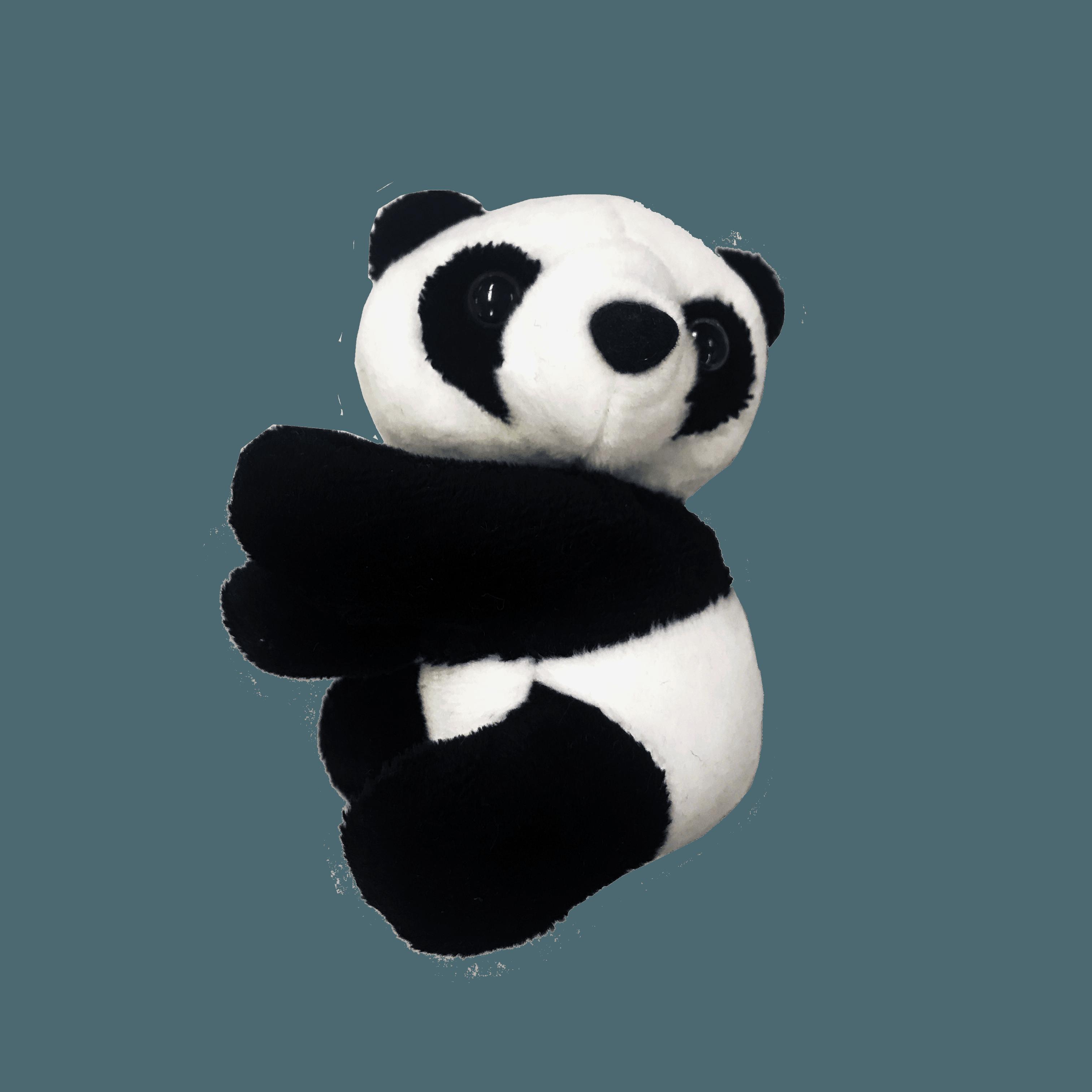 2c5cae035adb1 ギュッとしがみつくパンダの姿にキュン。ご自宅で職場で君のことを掴んで離さないパンダちゃん。
